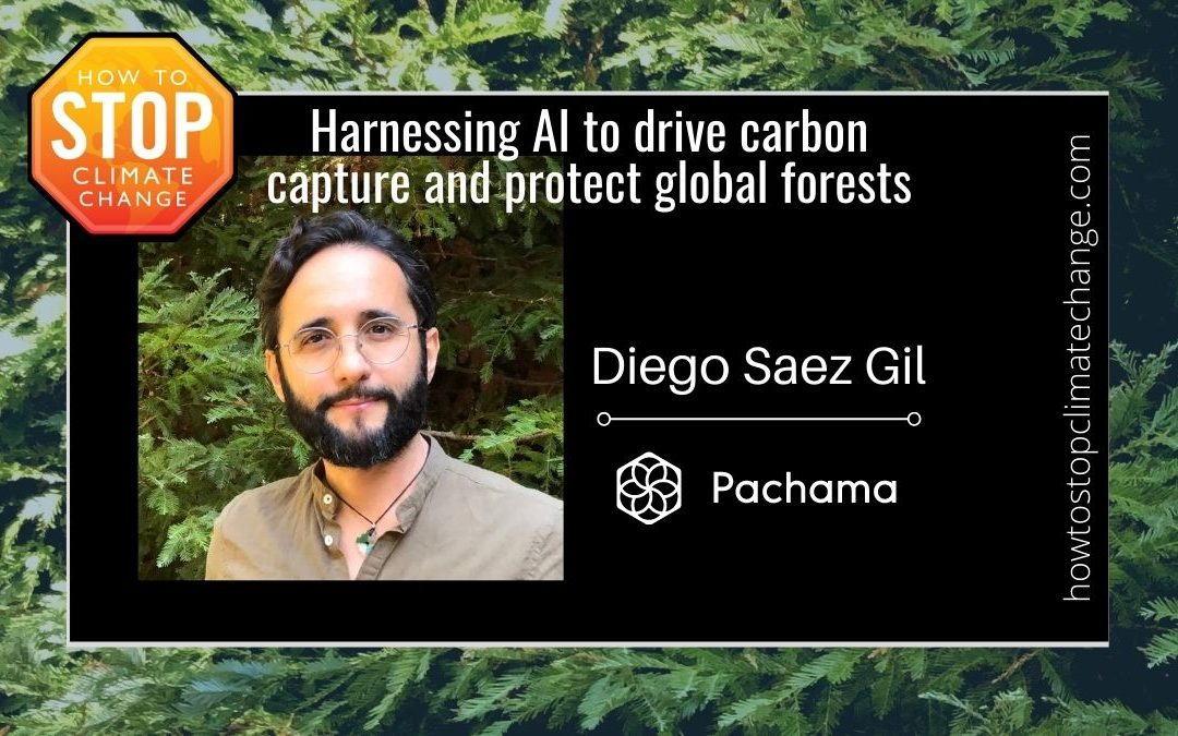 Climate, forests and AI: Measuring carbon sequestration in forests – Diego Saez Gil