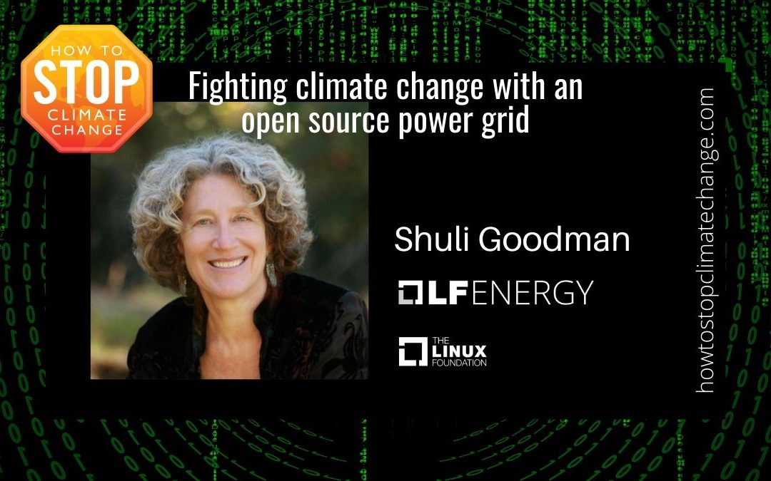 Fighting climate change with an open source power grid: Shuli Goodman – LF Energy